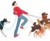 Köpek Gezdirme İş İlanları